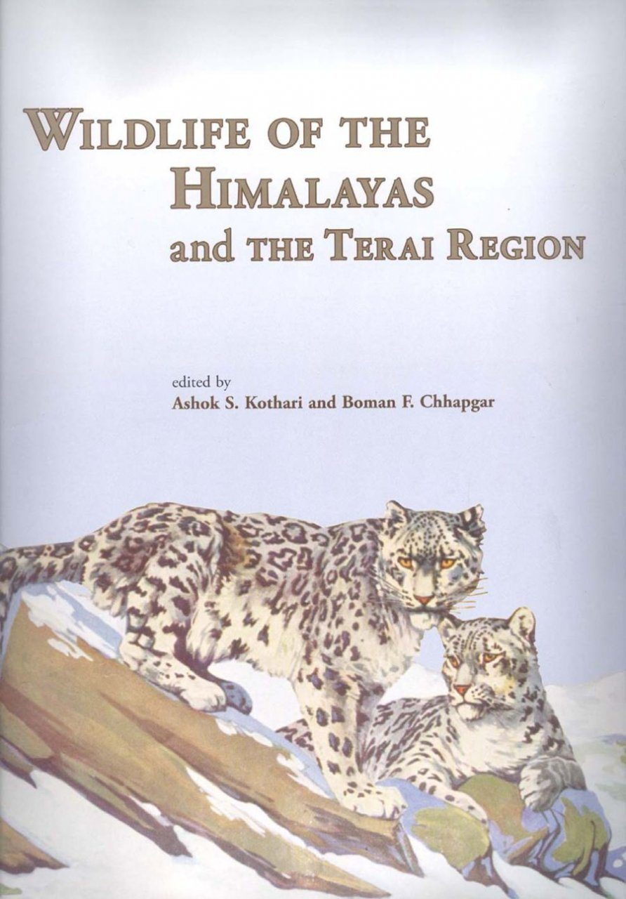 conservation of wildlife + essay Essay on hunting and wildlife conservation - hunting and wildlife conservation author gloria cooksey states, preserving habitat is an important key to species.