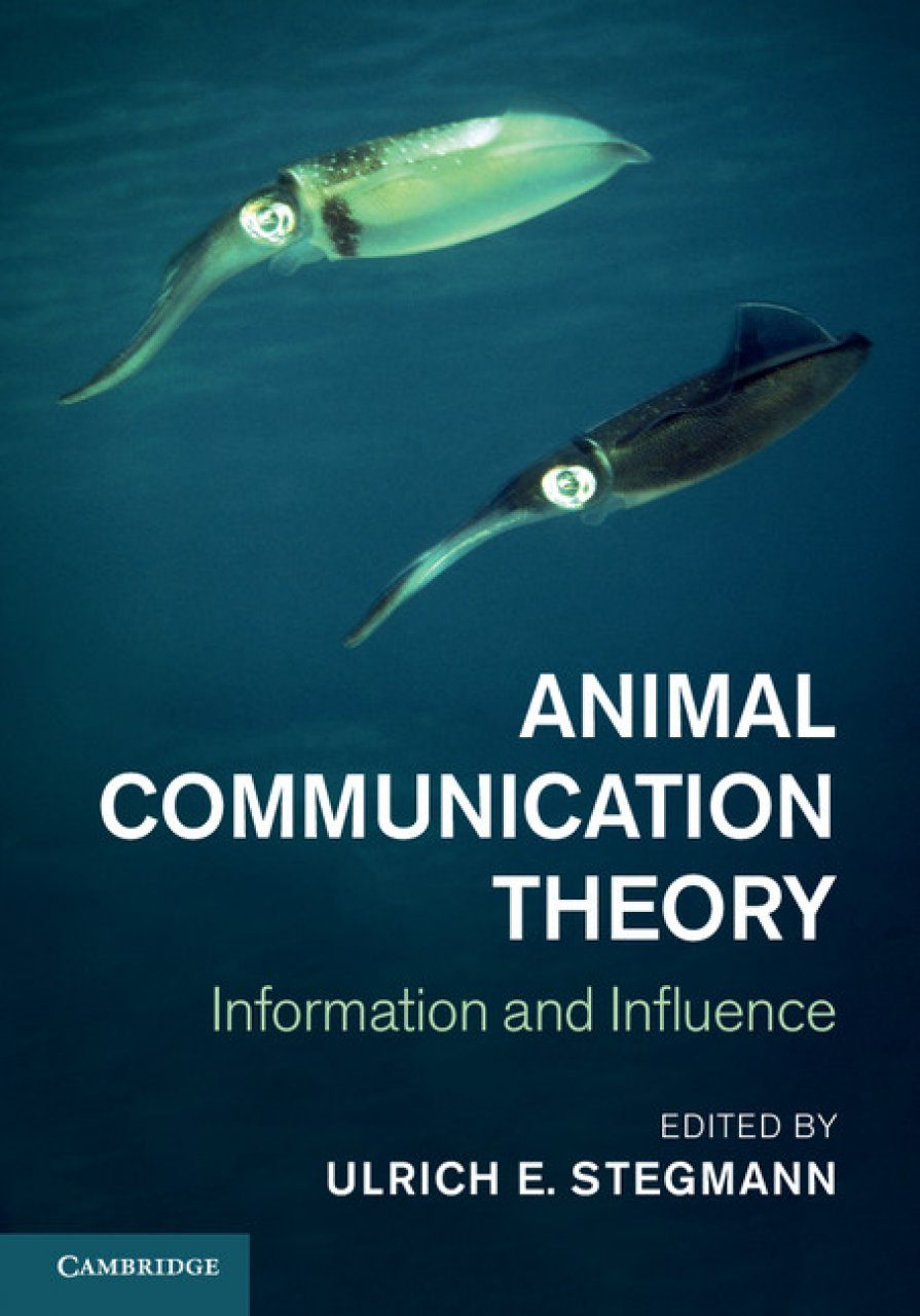 Information influence and inference in language