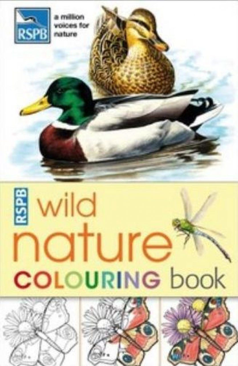 bird coloring pages rspb shop - photo#28
