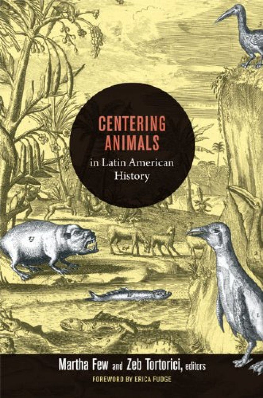 History of latin american know