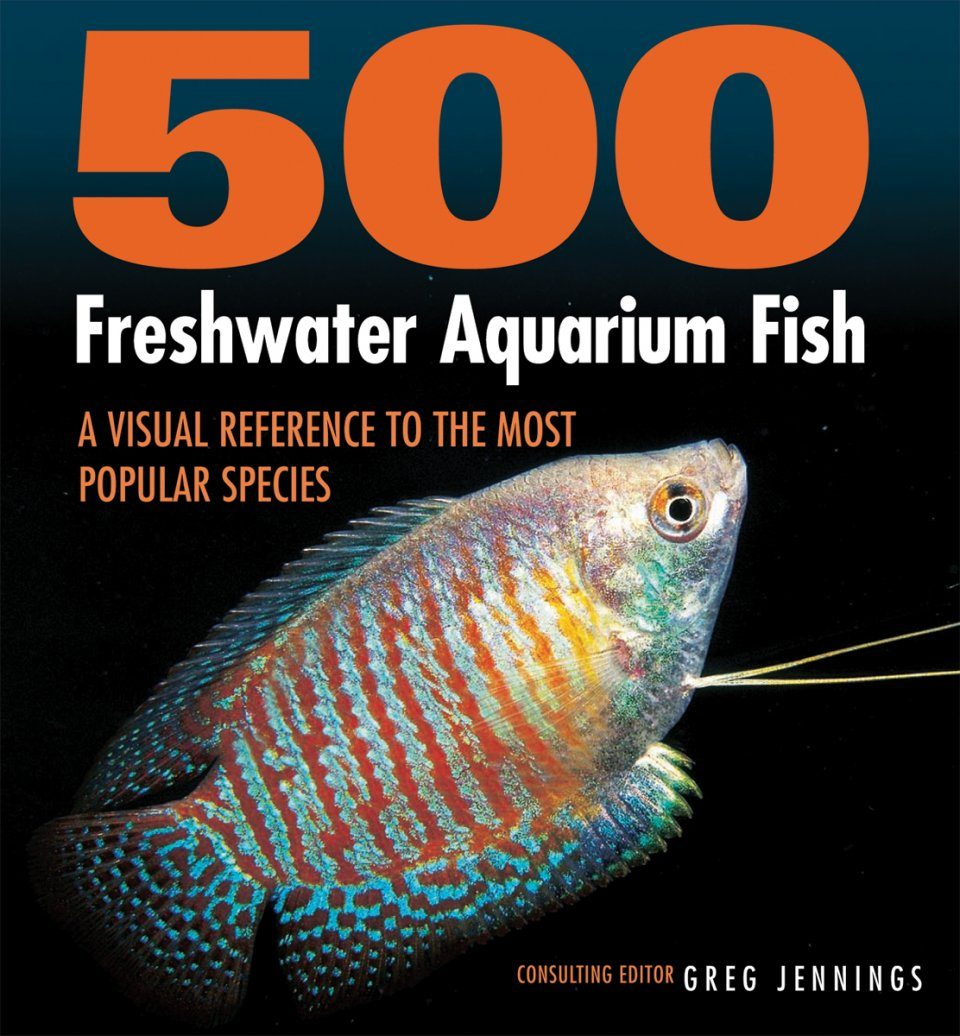 500 freshwater aquarium fish by greg jennings -