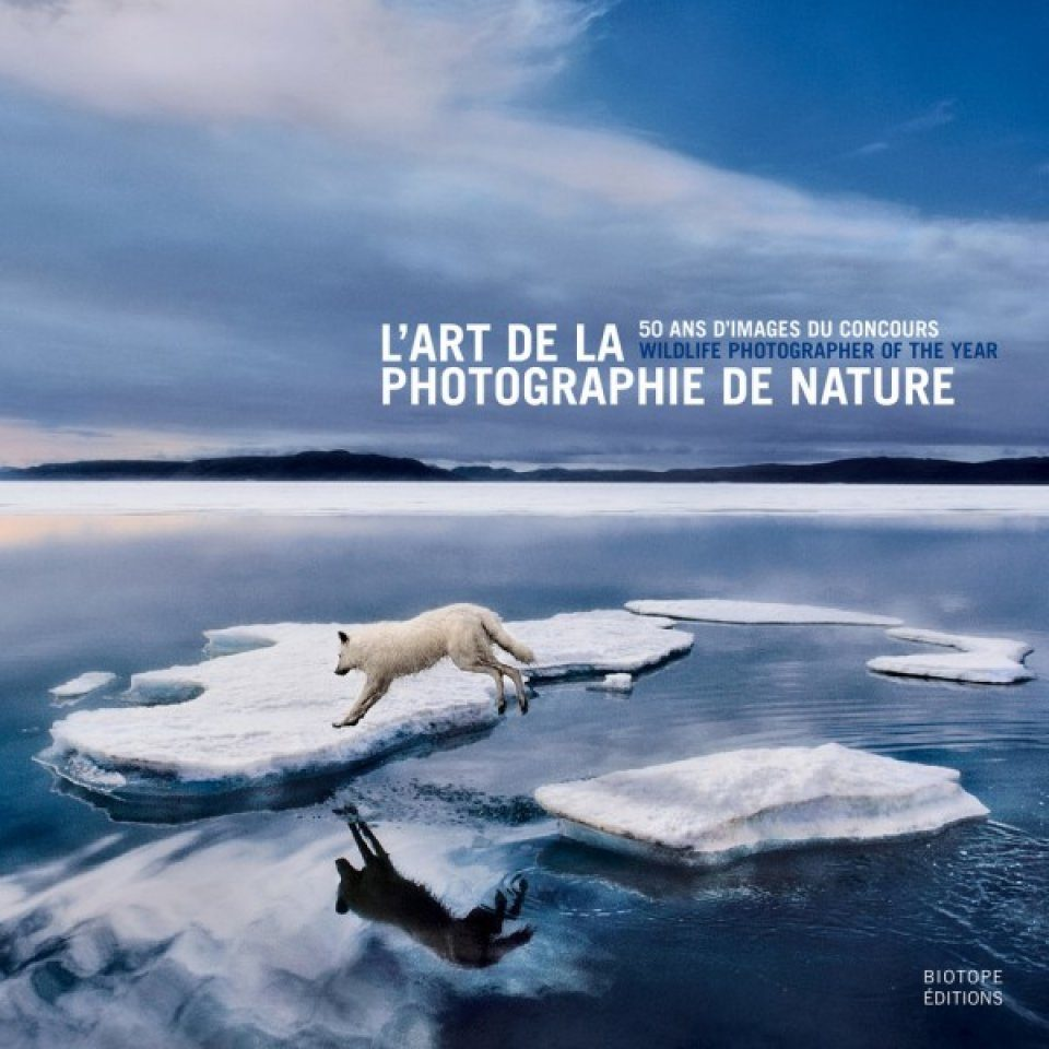 L 39 art de la photographie de nature rosamund kidman cox for La photographie