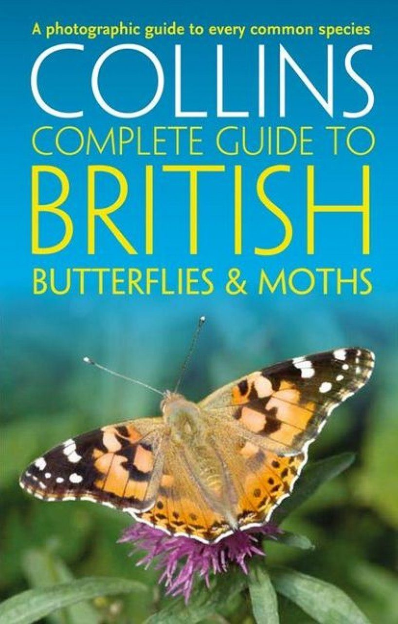 Collins Complete Guide To British Butterflies Amp Moths A Photographic Guide To Every Common