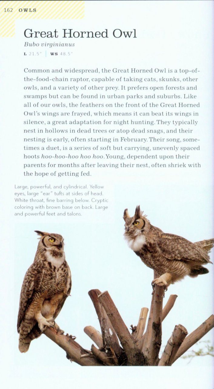 American Birding Association Field Guide To Birds Of New