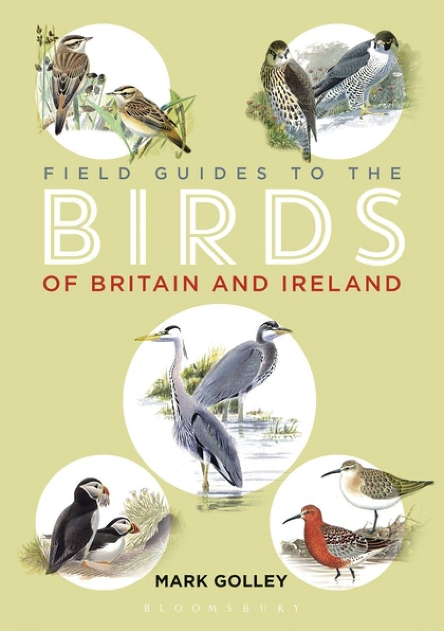 Bird Guide Britain: A Field Guide To British Birds Reference