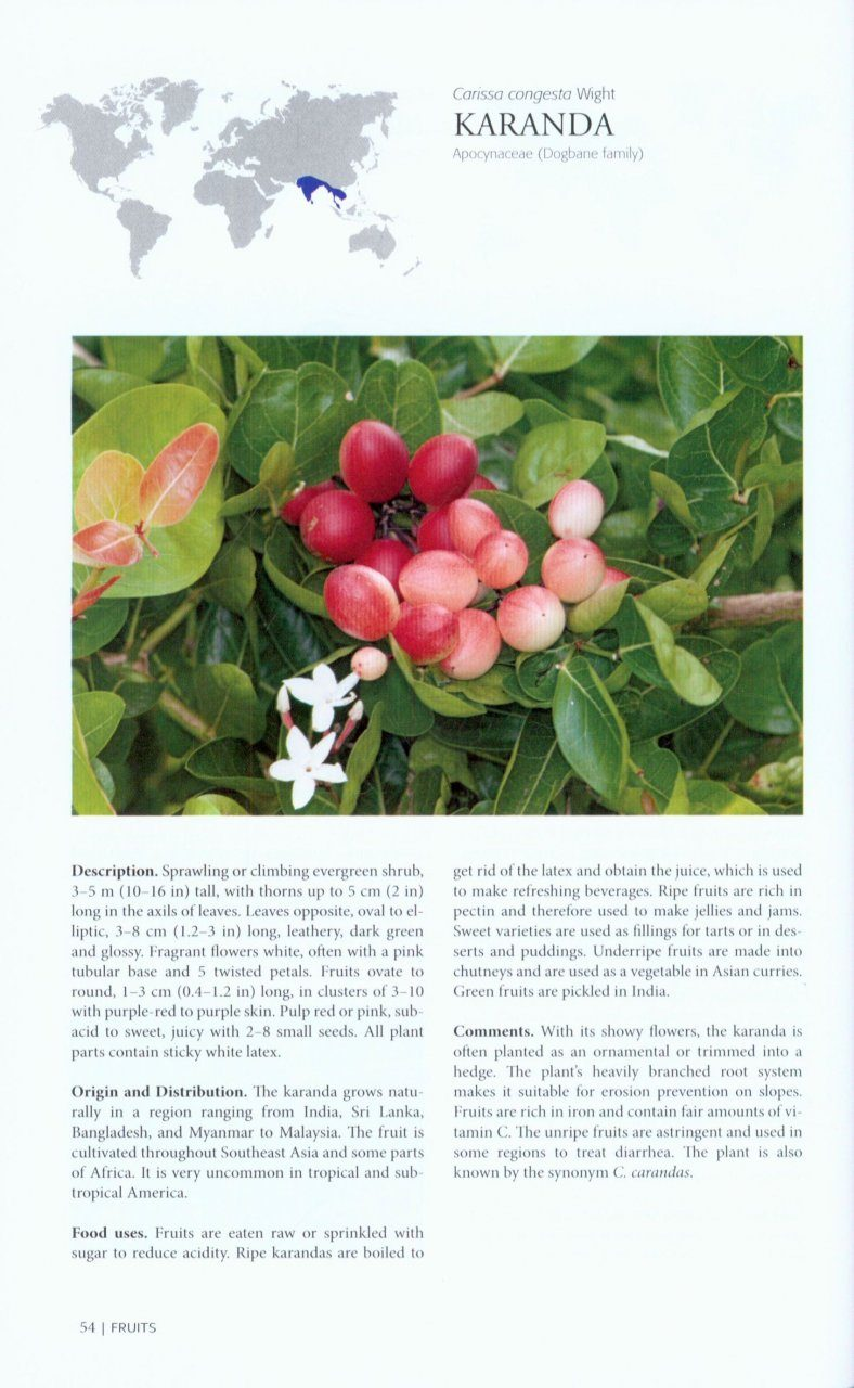 Tropical Fruits and Other Edible Plants of the World: An ...