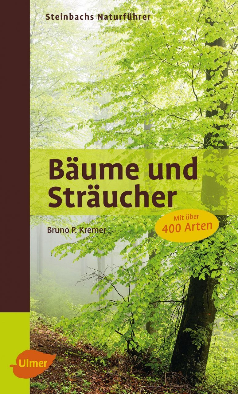 steinbachs naturf hrer b ume und str ucher steinbach 39 s field guide trees and shrubs bruno p. Black Bedroom Furniture Sets. Home Design Ideas