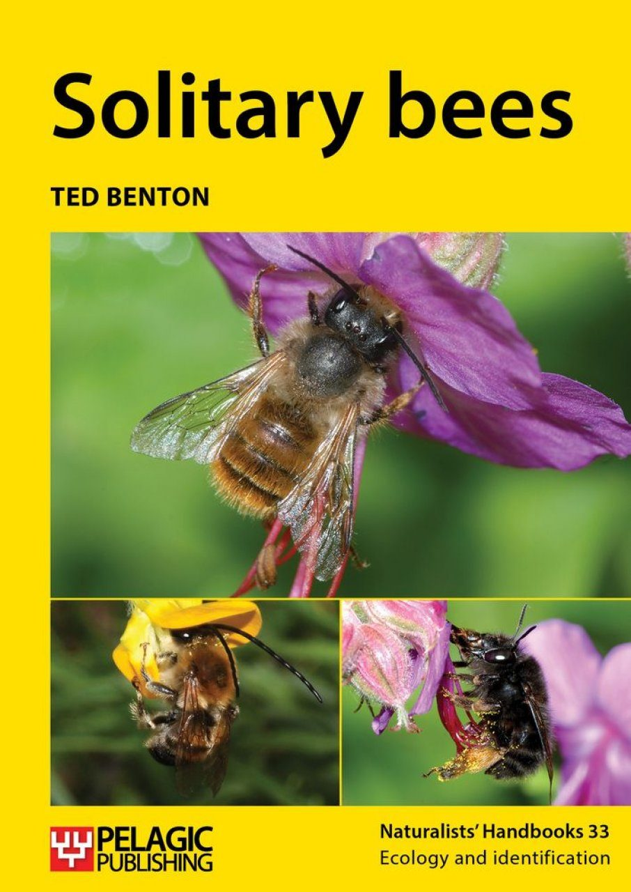 Solitary Bees Ted Benton William Dj Kirk Nhbs Book Shop