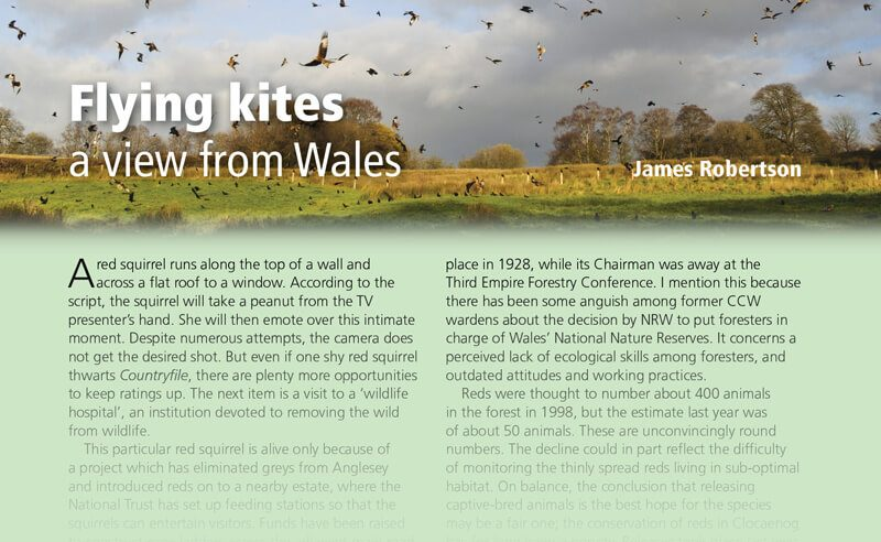 Flying kites: a view from Wales
