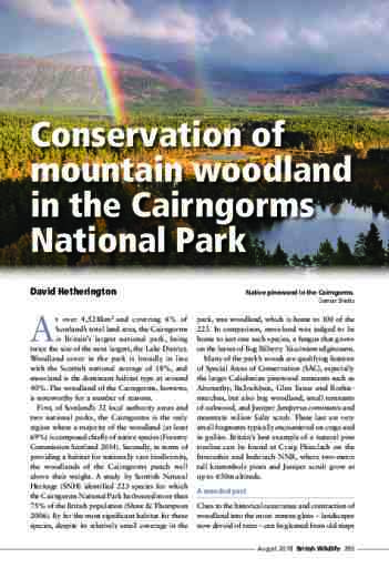 Conservation of mountain woodland in the Cairngorms National Park