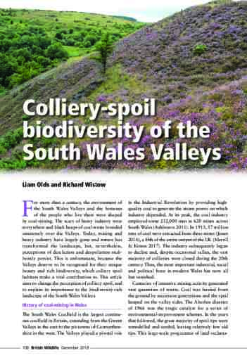 Colliery-spoil biodiversity of the South Wales Valleys