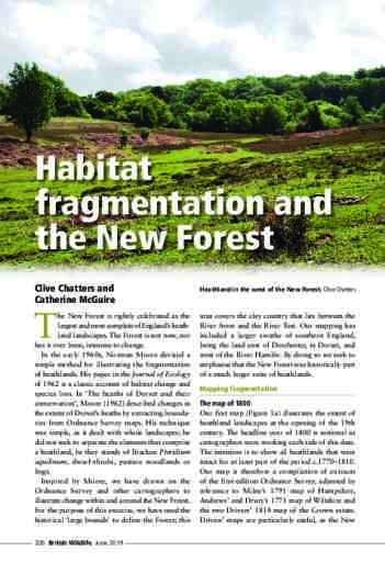 Habitat fragmentation and the New Forest