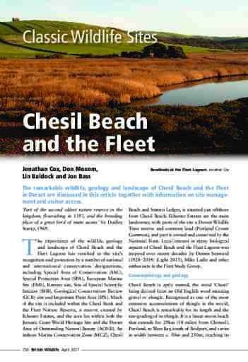 Classic Wildlife Sites: Chesil Beach and the Fleet