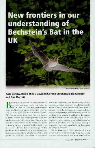 New frontiers in our understanding of Bechstein's Bat in the UK