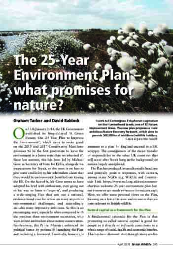 The 25-Year Environment Plan – what promises for nature?
