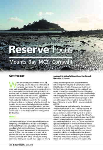 Reserve Focus: Mounts Bay MCZ