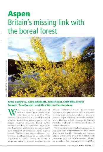 Aspen: Britain's missing link with the boreal forest