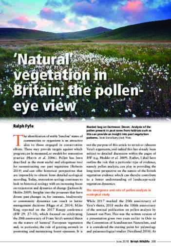 'Natural' vegetation in Britain: the pollen-eye view