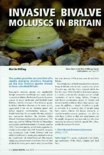 Invasive bivalve molluscs in Britain