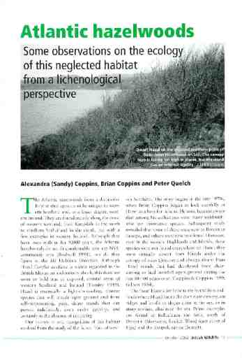 Atlantic hazelwoods – Some observations on the ecology of this neglected habitat from a lichenological perspective
