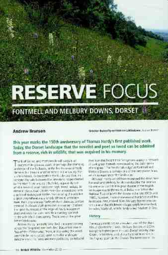 Reserve focus: Fontmell and Melbury Downs, Dorset
