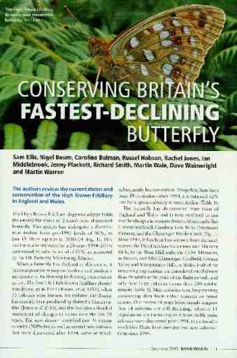 Conserving Britain's fastest-declining butterfly