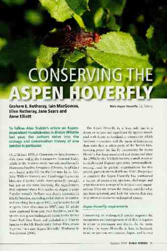 Conserving the Aspen Hoverfly