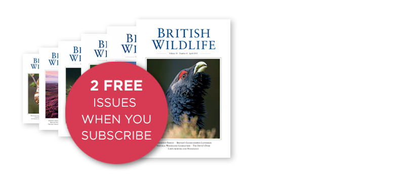 British Wildlife Subscription