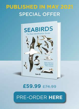 Seabirds The New Identification Guide
