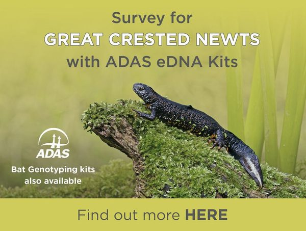 Survey for Great Crested Newts with ADAS eDNA kits