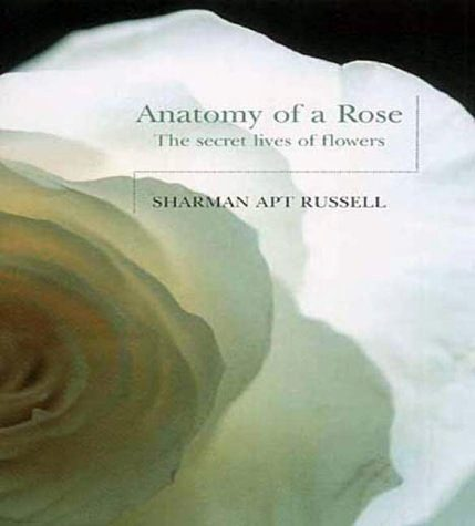 Anatomy Of A Rose The Secret Life Of Flowers Sa Russell Nhbs