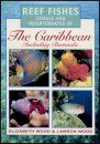 Reef Fishes, Corals and Invertebrates of the Caribbean Including Bermuda