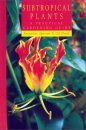 Subtropical Plants: A Practical Gardening Guide