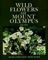 Wild Flowers of Mount Olympus