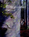 Bird Life of Woodland and Forest
