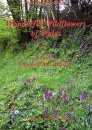 Wonderful Wildflowers of Wales, Volume 1: Woodland and Waysides