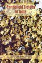 Parmelioid Lichens in India (A Revisionary Study)