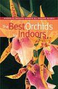 The Best Orchids for Indoors