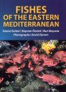 Fishes of the Eastern Mediterranean