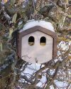 1N Schwegler Deep Nest Box