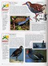 The Complete Guide to Birds of Britain and Europe