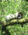 Schwegler Little Owl Box 20