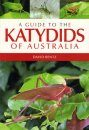 A Guide to the Katydids of Australia