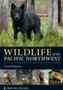 Wildlife of the Pacific Northwest