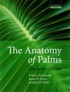 The Anatomy of Palms