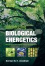 Introducing Biological Energetics