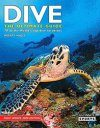 Dive: The Ultimate Guide to 70 of the World's Top Dive Locations