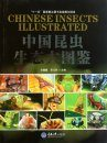 Chinese Insects Illustrated [Chinese]