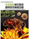 Common Insects and Other Invertebrates in Beijing [Chinese]