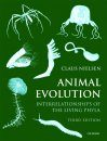 Animal Evolution